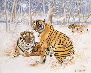 Tigers in the Snow, 2005 Canvas Print