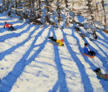 Tree shadows, Morzine Canvas Print