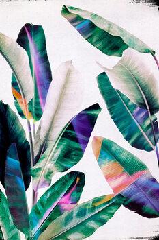 Canvas Print Tropical #1