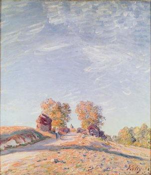 Uphill Road in Sunshine, 1891 Canvas Print