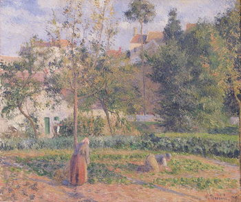 Vegetable Garden at the Hermitage, Pontoise, 1879 Canvas Print