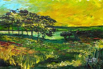 Vers L'Etang de Miragoane, 2010 Canvas Print