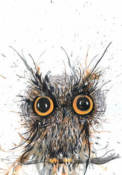 Wide eyed Owl, 2012, Canvas Print