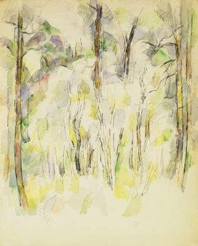 Canvas Print Woodland Scene