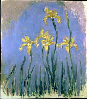 Canvas Print Yellow Irises; Les Iris Jaunes, c.1918-1925