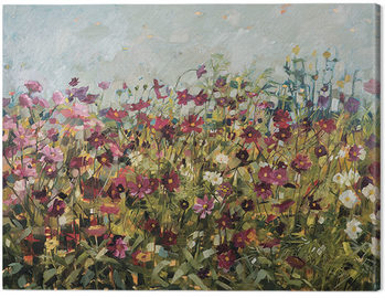 Anne-Marie Butlin - Pink Cosmos Canvas Print