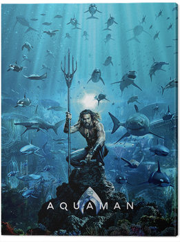 Aquaman - Teaser Canvas Print
