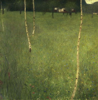 Farmhouse with Birch Trees, 1900 Canvas Print