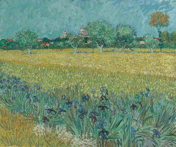 Field with Flowers near Arles, 1888 Canvas Print