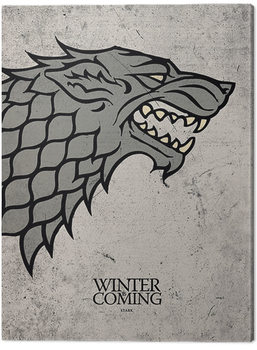 Game Of Thrones - Stark Canvas Print