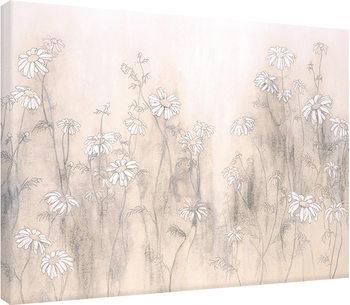 Hans Andkjaer - White Daisies Canvas Print