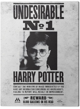 Harry Potter - Undesirable No.1 Canvas Print
