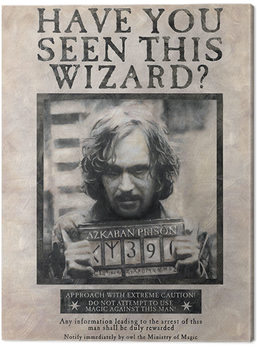 Harry Potter - Wanted Sirius Black Canvas Print
