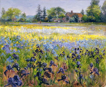 Irises and Two Fir Trees, 1993 Canvas Print