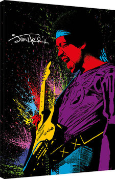 Jimi Hendrix - Paint Canvas Print