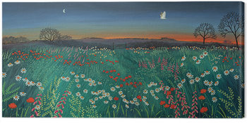 Jo Grundy - Twilight Meadow Canvas Print