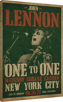 John Lennon - Concert Canvas Print