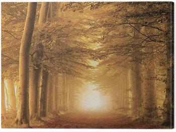 Lars Van De Goor - Autumn Feelings Canvas Print