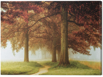 Lars Van De Goor - The Apostles Canvas Print
