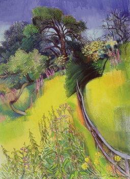 Midsummer Canvas Print