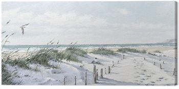 Richard Macneil - Footpath to the Beach Canvas Print