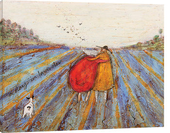 Sam Toft - A Day in Lavender Canvas Print