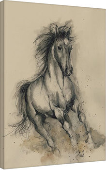 Sarah Stokes - Missy in Motion Canvas Print