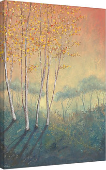 Serena Sussex - Silver Birch Tree in Autumn Canvas Print