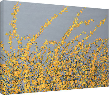 Simon Fairless - Yellow Blossom Canvas Print