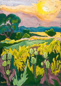 Skyfire, 2007 Canvas Print