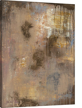 Soozy Barker - Gold Reflections Canvas Print
