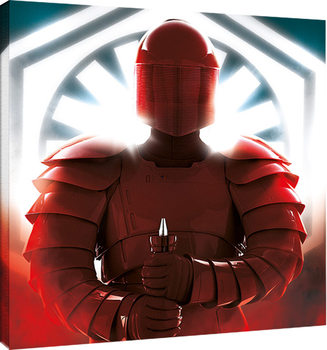 Star Wars The Last Jedi - Elite Guard Defend Canvas Print