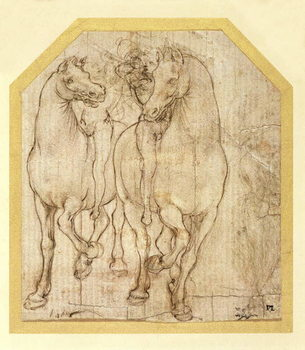 Study of Horses and Riders, c.1480 Canvas Print