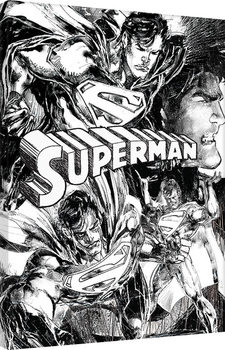 Superman - Sketch Canvas Print