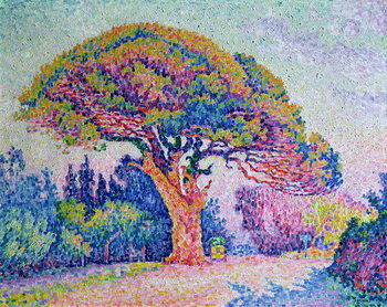 The Pine Tree at St. Tropez, 1909 Canvas Print