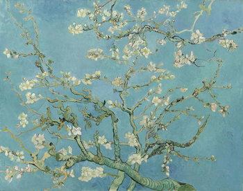 Canvas-taulu Almond Blossom, 1890