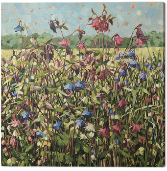 Canvas-taulu Anne-Marie Butlin - Aquilegia
