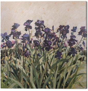 Anne-Marie Butlin - May Garden Canvas-taulu