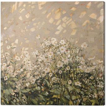 Anne-Marie Butlin - Morning Sun on Japanese Anemones Canvas-taulu