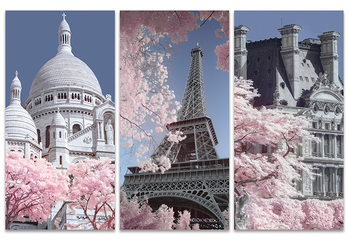 David Clapp - Paris Infrared Series Canvas-taulu