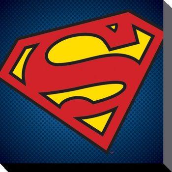 DC Comics - Teräsmies Symbol Canvas-taulu