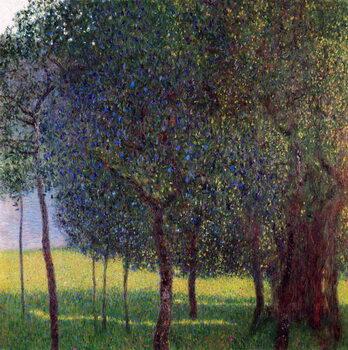 Canvas-taulu Fruit Trees