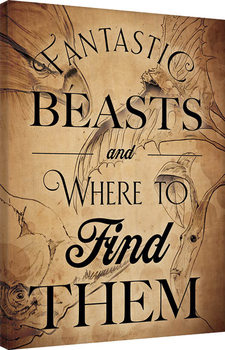 Ihmeotukset ja niiden olinpaikat - Beast Drawings Canvas-taulu