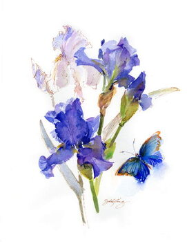 Canvas-taulu Iris with blue butterfly, 2016,