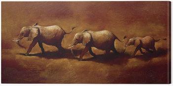 Jonathan Sanders  - Three African Elephants Canvas-taulu