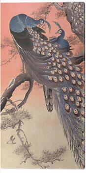 Canvas-taulu Ohara Koson - Two Peacocks on Tree Branch