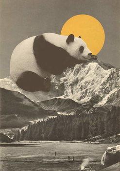 Canvas-taulu Panda's Nap into Mountains