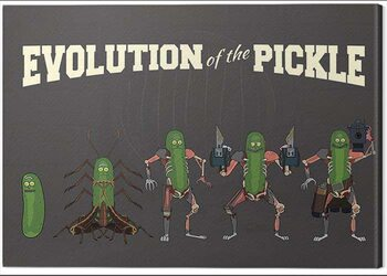 Canvas-taulu Rick and Morty - Evolution of the Pickle