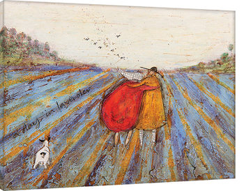 Sam Toft - A Day in Lavender Canvas-taulu