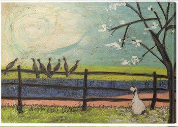 Canvas-taulu Sam Toft - Doris and the Birdies